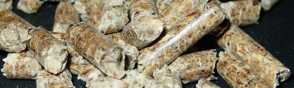 pellet a ekogroszek - kaloryczność i cena